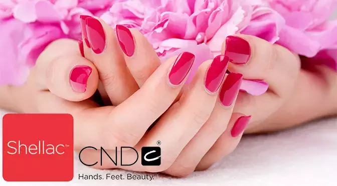 Shellac nails course