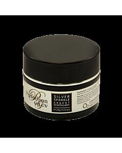 Perfection UV gel silver sparkle 1/2 oz jar