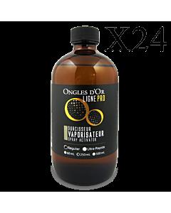 24 x Spray Activator Regular Formula Ligne Pro 250 ml