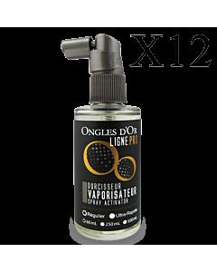 12 x Spray Activator Regular Formula Ligne Pro 60 ml