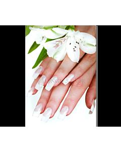Poster Ongles Manucure Française et Fleur Blanche