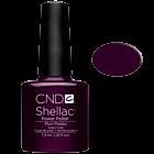 Shellac Plum Paisley Purple
